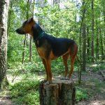 simple-thoughts-woefblog-hond-teken-help