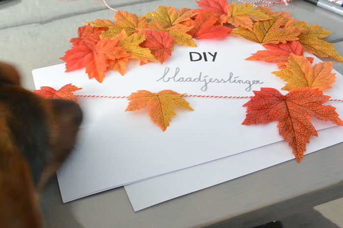 simple-thoughts-herfstslinger-diy-candy