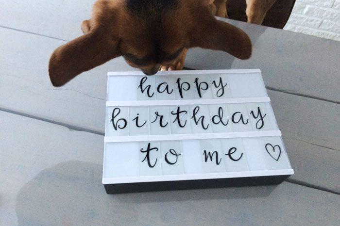 simple-thoughts-jarig-trakreert-winactie-verjaardag