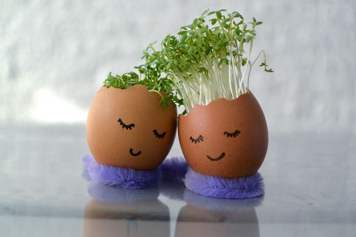 tuinkers eitjes diy simpele eierdop konijn